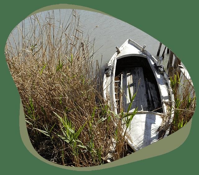Indicadores Medioambientales